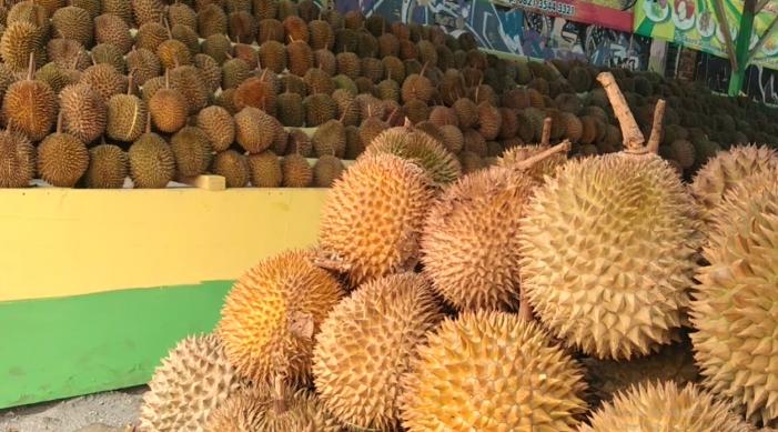 CV Jodha Buah Godean, Bagi Penggemar Durian Palembang